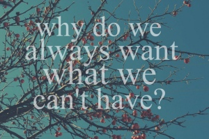 why-do-we-always-want-what-we-cant-have